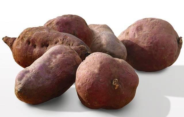 la patate douce contribue au bon maintien de votre santé : profitez-en pour l'intégrer à un bon gâteau au chocolat